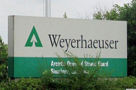 International Paper przejmuje Weyerhaeuser