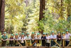 HP i World Wildlife Fund razem dla lasów