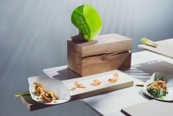 Zrównoważone tektury Metsä Board na targach Packaging Innovations 2020