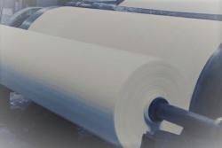 przyszłość przemysłu papierniczego