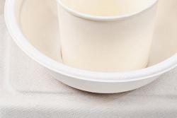 Stora Enso inwestuje w produkty z odnawialnych włókien formowanych