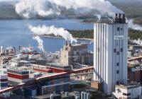 Metsä Board zwiększy produkcję tektury pudełkowej w Husum