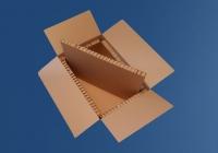 Thermo Box - innowacyjne opakowanie z papieru do mrożonek