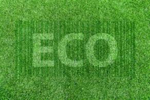 Ekologiczny e-commerce, czyli jak zadbać o środowisko handlując przez internet