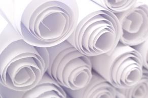 surowce do produkcji papieru